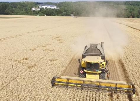 New Holland Harvester