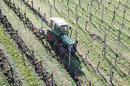 PSR im Weinbau