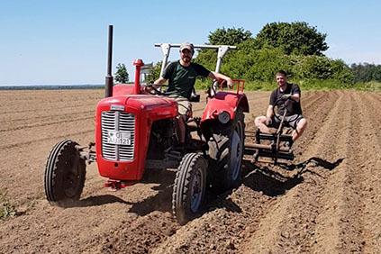 Kartoffeldämme ziehen mit alter Technik